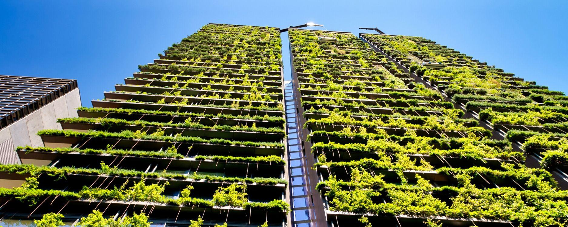 vegetación en edificio sostenible_diseño biofílico