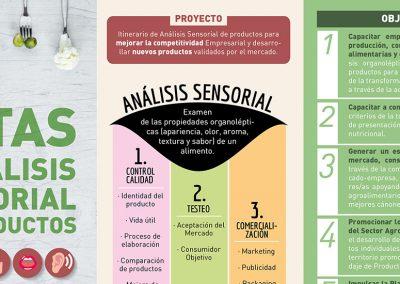 CINNGRA – Proyecto de Catas y Análisis Sensorial de Productos para Empresas y Consumidores
