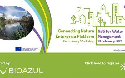 Bioazul organiza el primer taller online sobre SbN para la gestión del agua