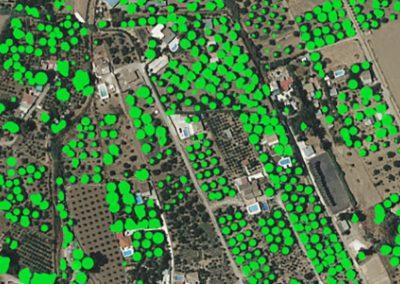 AGRON – Estudio territorial agrícola con uso de SIG y Deep Learning